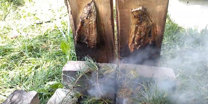 копчение рыбы по-скандинавски