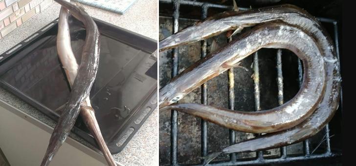 рыба-игла в коптильне
