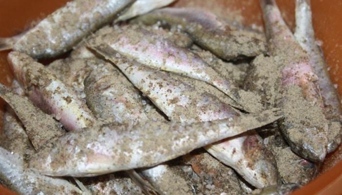 Сухая засолка барабули перцем и солью