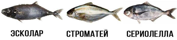 Виды масляной рыбы