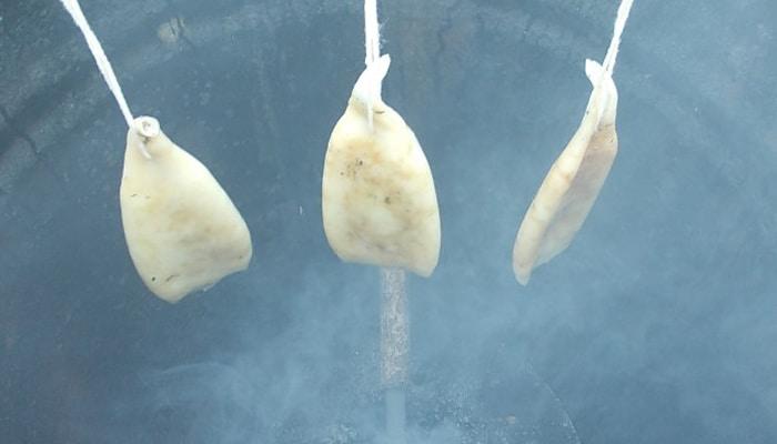 Процесс холодного копчения кальмаров