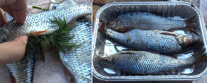 Укроп в брюшке рыбы