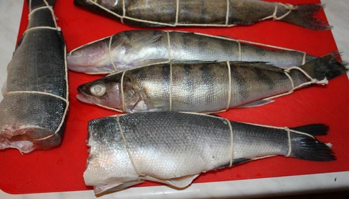 Обвязка рыбы бечевкой