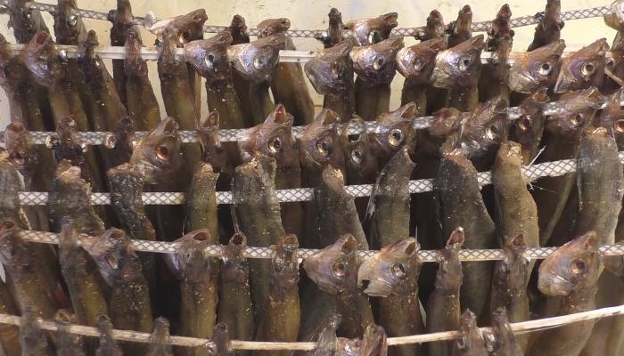 Сушка рыбы на шпажках