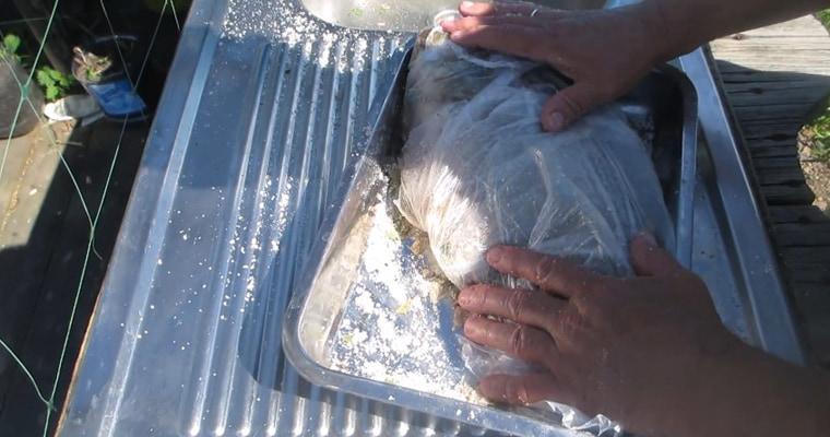 Засолка рыбы в пищевом пакете