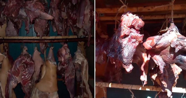 Просушка бобрятины и свинины