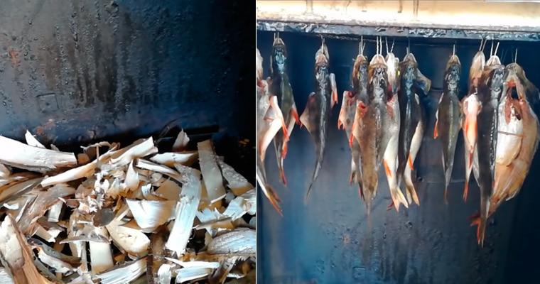 Копчение рыбы в холодильнике