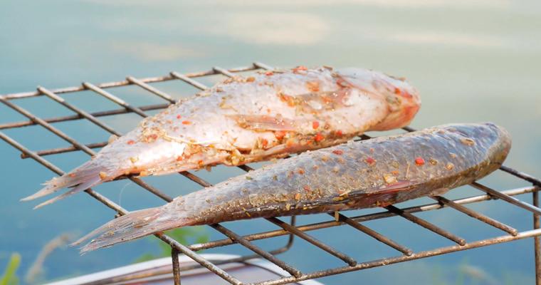 Проветривание рыбы