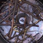 Веточки плодового дерева в коптильне