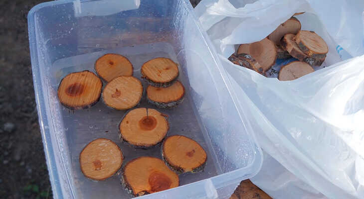 Замачивание древесины