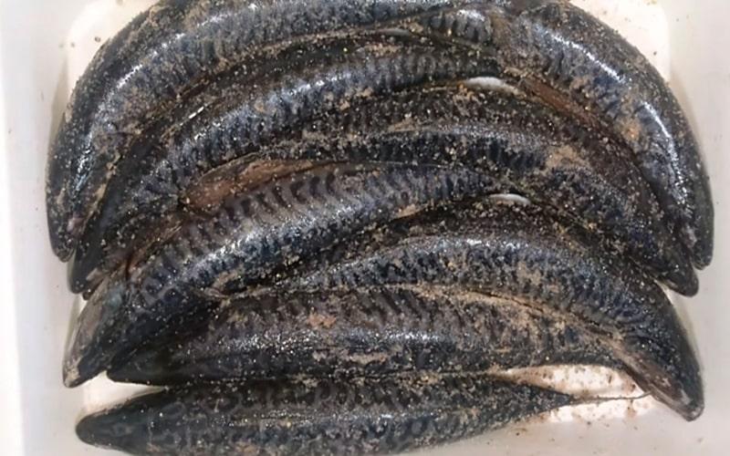 Засолка скумбрии с мускатным орехом